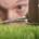 Mann schneidet Gras mit Nagelschere